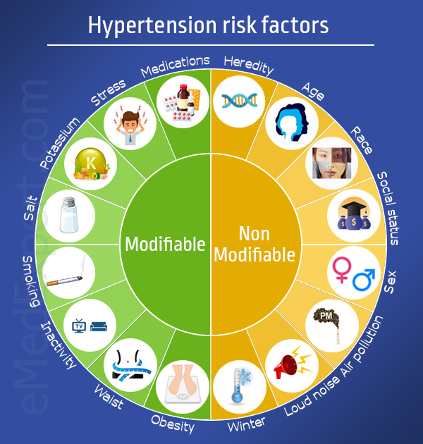 High blood pressure risk factors infographic